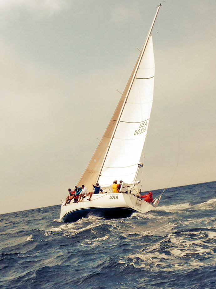 2014 Round the Bay Race