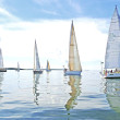 2015 Round the Bay Race